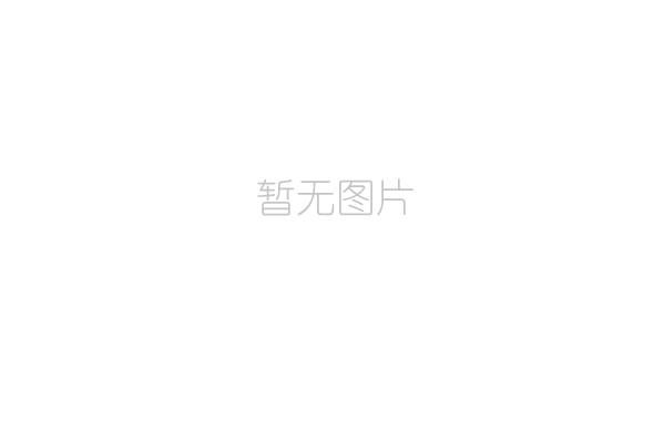 奥体城公司传达学习市委十三届九次全会精神
